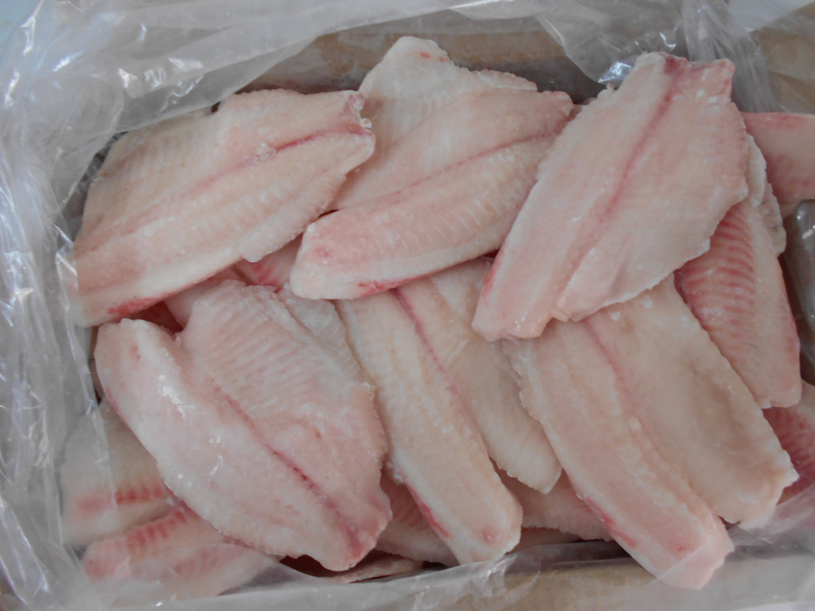Frozen Tilapia Fillet Normal Trimmed